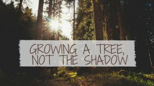 Growing a Tree, Not the Shadow