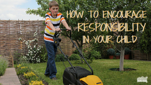 How To Encourage Responsibility In Your Child